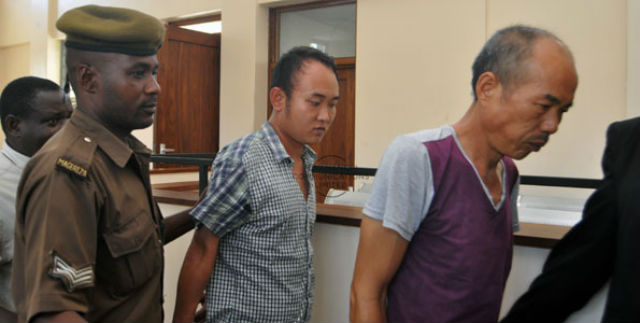 Two Chinese poachers jailed for 30 years for the slaughter of 226 elephants