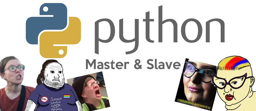 Python Removes Offensive Terms Master and Slave from Programming Language